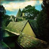 Renaissance Roof